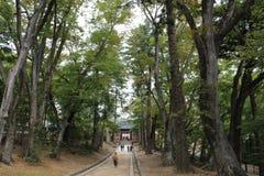 Haeinsa tempelväg Royaltyfri Foto