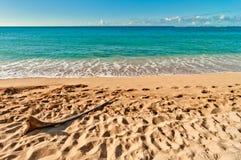 Haena strand i den Kauai ön, Hawaii Arkivbild