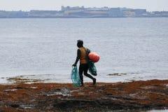 Haenyo woman harvesting shellfish, Jeju Island, South Korea. Haenyo diver woman with fish net harvesting shellfish in Jeju Island, South Korea royalty free stock photos