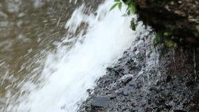 Haewsu Wat Waterfall tropisch bos, het Nationale park van Khao Yai, Thailand Stock Fotografie