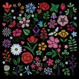 Hafciarscy elementy Kwiaty, liście, dragonflies, motyle haftujący na czarnym tle Kwieciści motywy dla Zdjęcia Stock