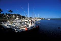 Hafen in Hawaii stockbilder