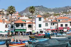 Hafen mit Fischen versendet bei Camara de Lobos, Madeira-Insel Stockfotografie