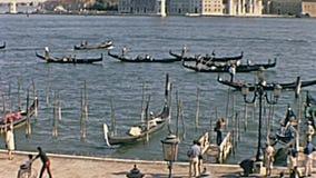 Hafen Sans Marco stock footage