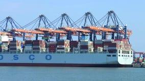 Hafen-Tätigkeit stock video
