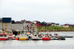 Hafen und Möven Lizenzfreies Stockbild