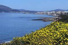 Hafen von Alghero - Sardinien - Italien Lizenzfreie Stockfotografie