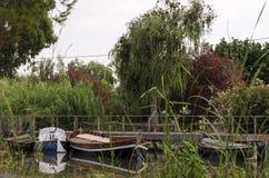 Hafen von Catarroja-Link mit Albufera stockbild