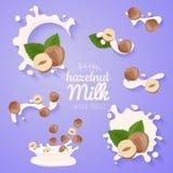 Hafer im Milchspritzen Gro?er Spritzensatz Haselnuss-Milchflu? des strengen Vegetariers gie?en alternativer organischer Nicht Mol stock abbildung