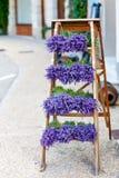 Haga compras en Provence adornó con cosas de la lavanda y del vintage Fotografía de archivo