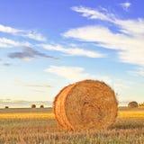 Haga heno el rodillo, el cielo azul y el campo en la puesta del sol. Toscana Fotografía de archivo libre de regalías