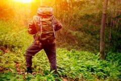 Haga la mochila que lleva del caminante en bosque fotografía de archivo