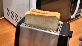 Haga la tostada en la tostadora almacen de metraje de vídeo