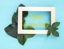 Haga que un día agradable en marco de madera con la hoja verde fresca adorne Imágenes de archivo libres de regalías