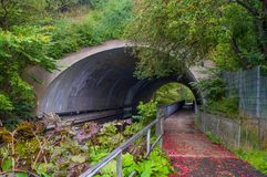 Haga un túnel debajo del ferrocarril cerca de Ringsted en Dinamarca Fotos de archivo
