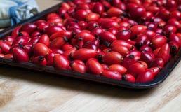 Hagebutten-Beeren auf einem Backblech Lizenzfreie Stockfotografie