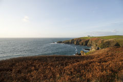 Hagedispunt in Cornwall, het UK Stock Foto's