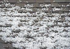 Hagel auf dem Dach Stockbild