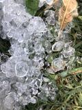 Hagelstenen in groen gras Royalty-vrije Stock Foto's