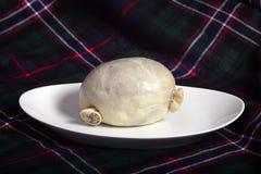 Haggis met geruite Schotse wollen stof Stock Afbeeldingen