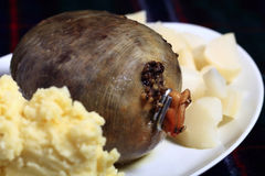 Haggis on a plate Stock Photography