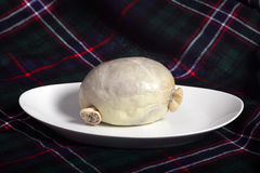 Haggis with tartan Stock Images