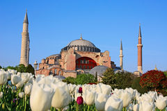 Haghia (Aya) Sophia. Famous church and mosque in Istanbul royalty free stock photography