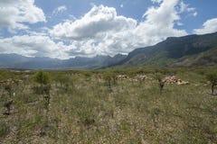 Haghier góry Obraz Royalty Free