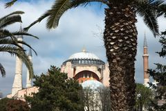 Hagia Sophia behind the palm trees in İstanbul Turkey. Ancient Byzantine architecture Hagia Sofia. Formerly a christian church, now a mosque and a museum behind Stock Photography