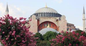 Hagia Sophia, Istanbul. Stock Images