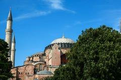 hagia sophia Istanbul indyk Zdjęcie Royalty Free
