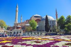 Hagia Sophia mosque in Istanbul stock image
