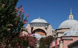Hagia Sophia museum i Istanbul Royaltyfria Bilder