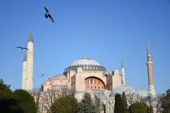 Hagia Sophia Museum Istanbul Turkey Royaltyfri Foto