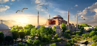 Hagia Sophia at sunset. Bird and Hagia Sophia at sunset in Istanbul, Turkey royalty free stock images