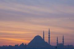 Hagia Sophia.Istanbul. Turkey Royalty Free Stock Image