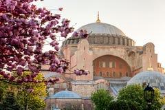 Hagia Sophia view Royalty Free Stock Images
