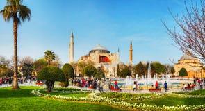 Hagia Sophia w Istanbuł, Turcja w ranku Fotografia Royalty Free