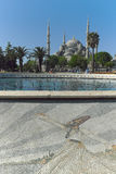 Hagiaen Sophia i Istanbul Turkiet på en April eftermiddag Arkivfoto