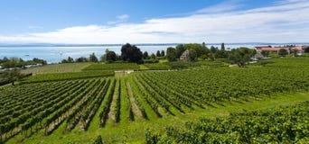 Hagnau - lago Constance, Baden-Wuerttemberg, Alemanha, Europa Fotografia de Stock Royalty Free