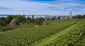 Hagnau - Lake Constance, Baden-Wuerttemberg, Germany, Europe. The village Hagnau at Lake Constance with vineyards in the foreground - Hagnau, Lake Constance royalty free stock image