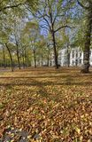The Hague in Autumn Royalty Free Stock Image