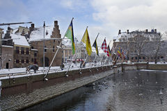 The Hague, Holland in Winter. Flags along the Hofvijver in The Hague, Holland in the snow. Picture taken on December 18, 2010 in The Hague, Holland royalty free stock images