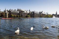 The Hague. NETHERLANDS - MAY 5, 2016: The Binnenhof buildings beside Hofvijver Court Pond, Dutch Parliament and the core of Royalty Free Stock Photos