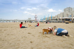 The Hague, Netherlands - May 8, 2015: Children playing at the beach, Scheveningen Stock Photo