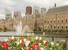 The hague Stock Photography