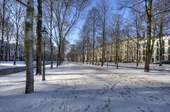 The Hague Winter Stock Photography