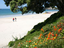 Hahei Beach New Zealand. Retired couple on vacation taking a walk on the beach in New Zealand Royalty Free Stock Photos