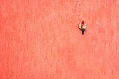 Hahn auf rotem Hintergrund Lizenzfreies Stockfoto