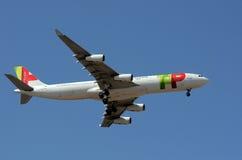 Hahn - Portugal-Fluglinie - Flugzeug Stockbild
